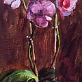 Magenta Orchid by Beverly Klucher
