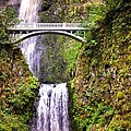 Magic At Multnomah Falls by Image Takers Photography LLC - Laura Morgan