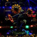 Magic Garden by Donna Blackhall