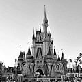 Magic Kingdom Castle In Black And White by Thomas Woolworth