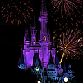 Magic Kingdom Castle In Purple With Fireworks 02 by Thomas Woolworth