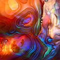 Magic Shell by Rona Black