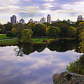 Magical 1 - Central Park - New York by Madeline Ellis