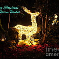 Magical Christmas by Lingfai Leung