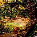 Magical Forest - Myth - Fantasy by Marie Jamieson