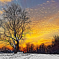 Magical Winter Sunset by William Jobes