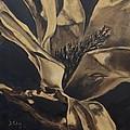 Magnolia Blossom In Sepia by Donna Tuten
