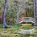 Magnolia Bridge by Susan Cole Kelly
