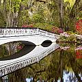 Magnolia Gardens' Bridge by Sharon M Connolly