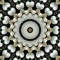 Magnolia Hearts Mandala by MM Anderson