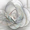 Magnolia Jazz by Elizabeth McTaggart