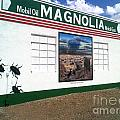 Magnolia Mobil Gas by Kelly Awad