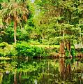 Magnolia Plantation Gardens by Priscilla Burgers