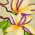 Magnolias by Carol Sabo