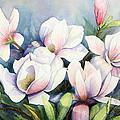 Magnolias by Ursula Reeb