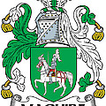 Maguire Coat Of Arms Irish by Heraldry