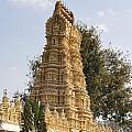 Maharaja's Palace India Mysore by Carol Ailles