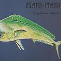 Mahi-mahi by Katharina Filus