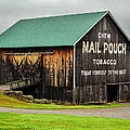 Mail Pouch Tobacco Barn by Anthony Thomas