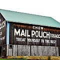 Mail Pouch Tobacco Barn II by Anthony Thomas