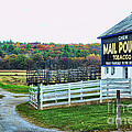 Mail Pouch Tobacco Barn In The Fall by Paul Ward