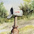 Mailbox by Sam Sidders