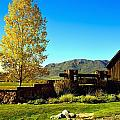 main gate to Marabou ranch by Gerald Blaine