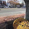 Main Street East Hampton New York by Bob Savage