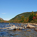 maine 1 Acadia National Park Jordan Pond in Fall by Terri Winkler