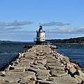 maine 43 Portland Lighthouse by Terri Winkler