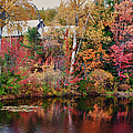 Maine Barn Through The Trees by Jeff Folger