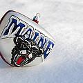 Maine Black Bears Ornament by Glenn Gordon