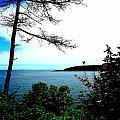 Maine by Dancingfire Brenda Morrell