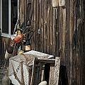 Maine Fishing Buoys And Nets by Randall Nyhof