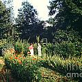 Maine Garden by George DeLisle