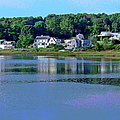 Maine Lakefront by Suzanne Gaff
