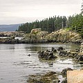 Maine's Beautiful Rocky Shore by Denyse Duhaime