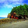 Maine's Rugged Shore by Dancingfire Brenda Morrell