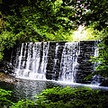 Mainline Waterfall by Bill Cannon