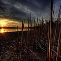 Majestic Lake Sunset by David Dufresne