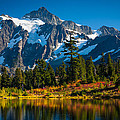 Majestic Mount Shuksan by Inge Johnsson