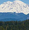 Majestic Rainier by Tikvah's Hope