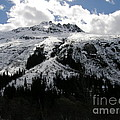 Majestic Skagway Mountaintop by Bev Conover