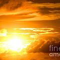 Majestic Sunset by Kristine Merc