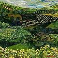 Majestic Valley by Allan P Friedlander