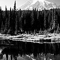 Majestic View 2bw by Earl Johnson
