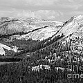 Majesty Mountains Black And White by Mary Lou Chmura