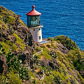 Makapu'u Point Lighthouse by Marlene Lebel