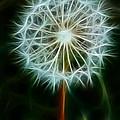 Make A Wish by Joann Copeland-Paul