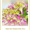 Make Your Dreams Come True by Susanne Van Hulst